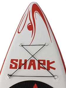 Shark SUP Nose