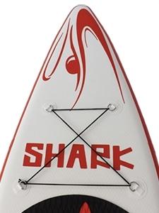Shark SUP Nose