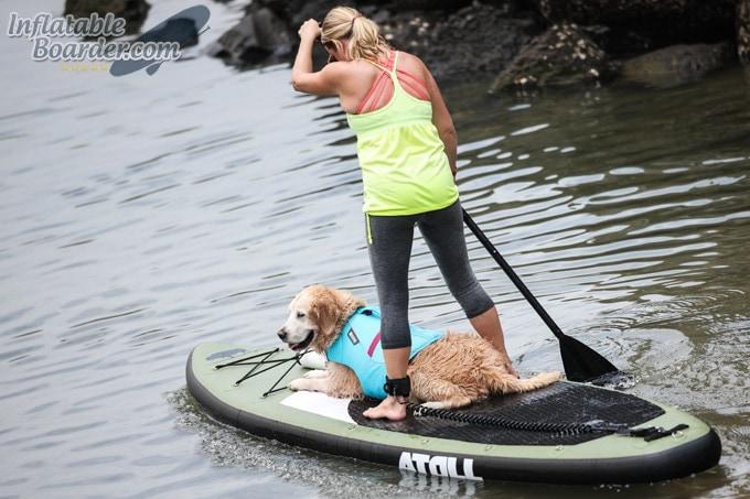 Atoll 11' SUP Paddling Dog