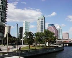 Paddle Boarding in Tampa, FL