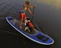 Ruffwear K9 Float Coat Review