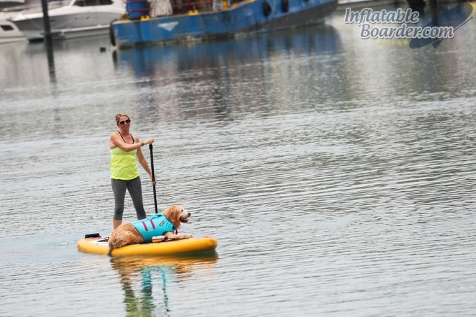 HAWK SUP Paddle Board with Dog
