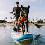 Dog on ISLE Pioneer