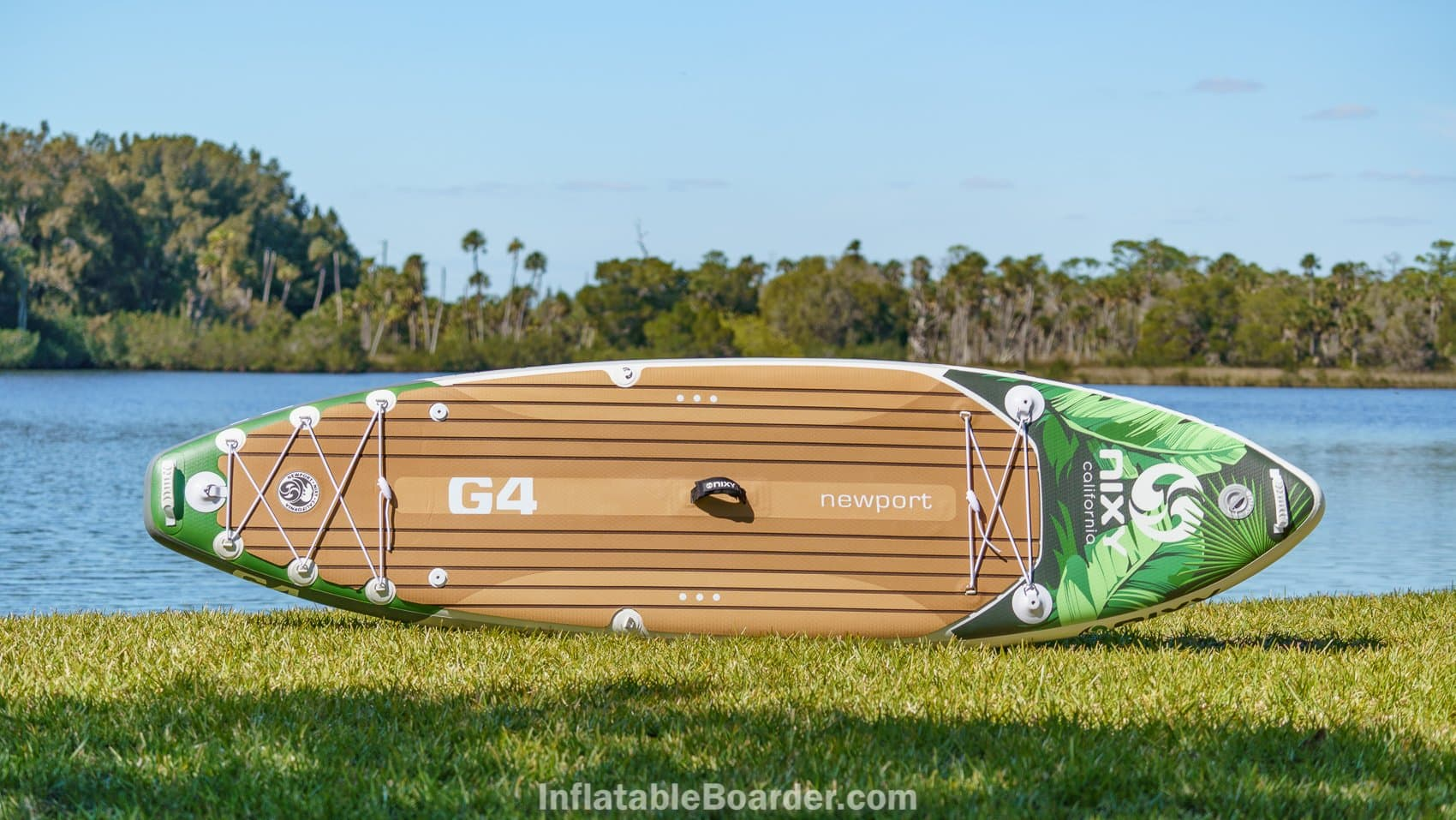 Top overview of the 2021 Nixy Newport G4 in palm color option.